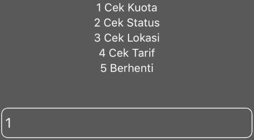 Gambar Hasil Cara Cek Voucher Paket Kuota Indosat kedua