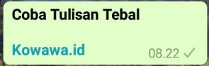 Cara Membuat Tulisan Tebal Di aplikasi WhatsApp